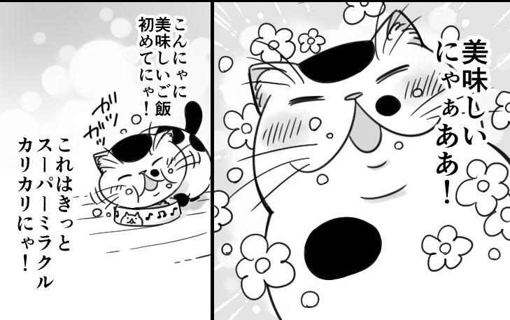 猫漫画 おじさまと猫「スーパーミラクルカリカリ」
